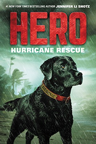 Hurricane Rescue (Hero, Bk.2)