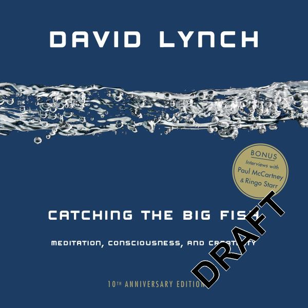 Catching the Big Fish: Meditation, Consciousness, and Creativity (10th Anniversary Edition)