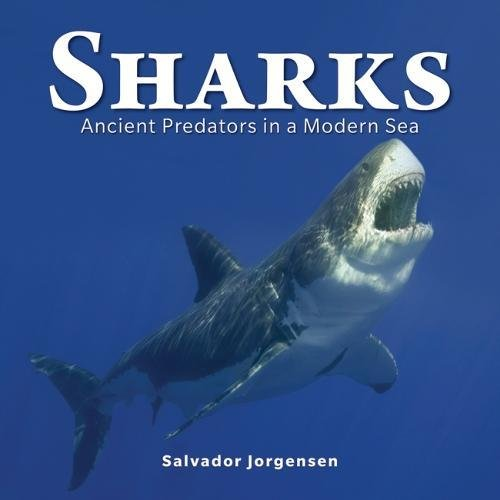 Sharks: Ancient Predators in a Modern Sea