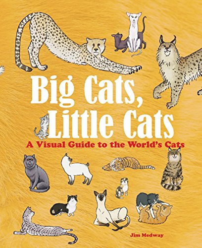 Big Cats, Little Cats: A Visual Guide to the World's Cats (Big and Little)