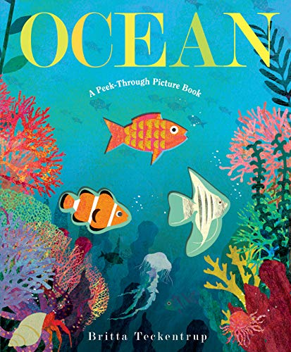 Ocean: A Peek-Through Picture Book