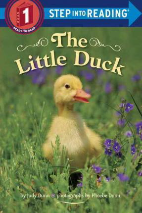 The Little Duck (Step into Reading, Level 1)