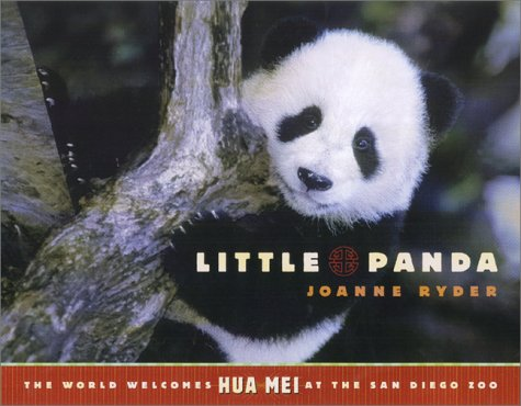 Little Panda (The World Welcomes Hua Mei At The San Diego Zoo)