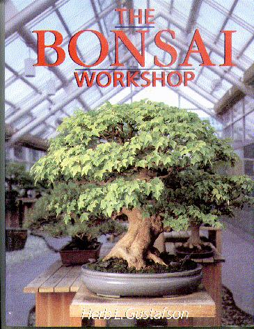 The Bonsai Workshop