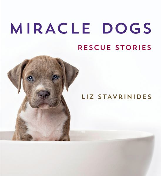 Miracle Dogs: Rescue Stories