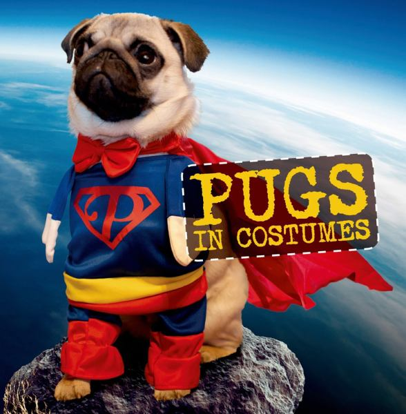 Pugs in Costumes