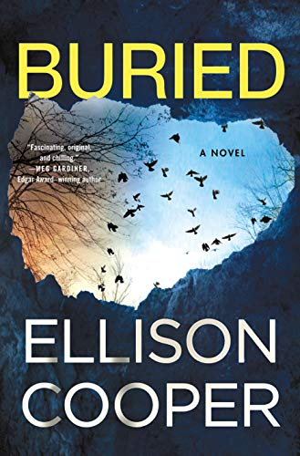Buried (Agent Sayer Altair, Bk. 2)