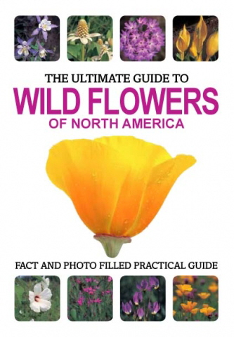 The Ultimate Guide to Wildflowers of North America