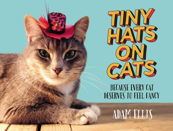 Tiny Hats on Cats: Because Every Cat Deserves to Feel Fancy