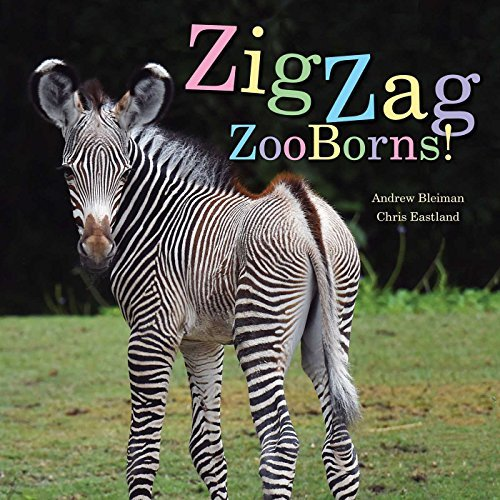 ZigZag ZooBorns!: Zoo Baby Colors and Patterns