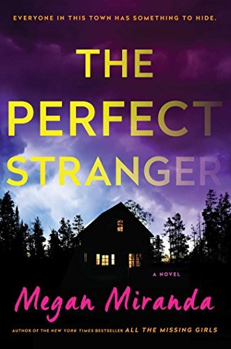 The Perfect Stranger: A Novel