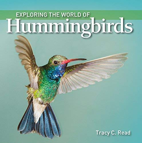 Exploring the World of Hummingbirds