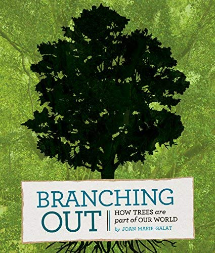 Branching Out: How Trees Are Part of Our World