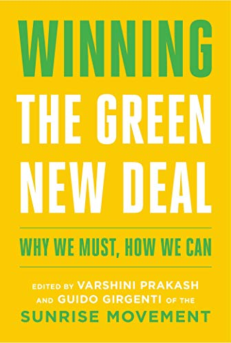 Winning the Green New Deal: Why We Must, How We Can